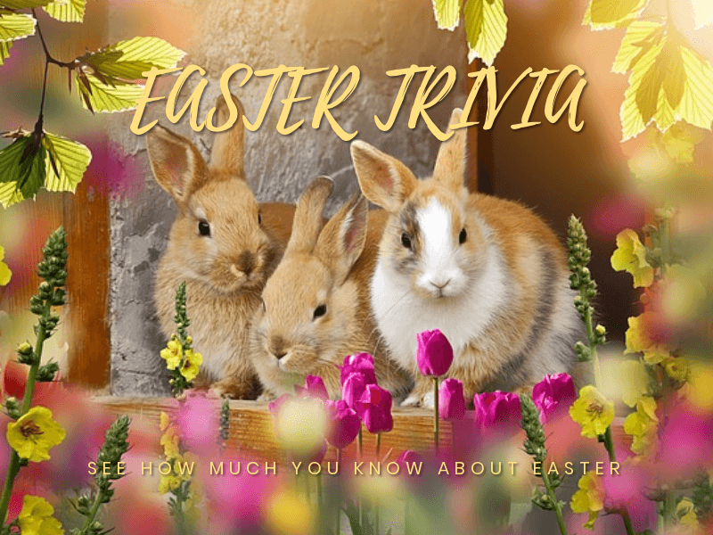 EASTER TRIVIA.png