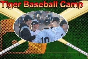 Tiger baseball camp pic.jpg