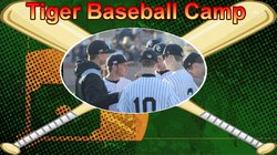 Tiger baseball camp pic.jpg